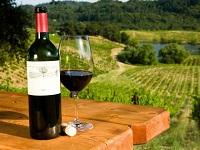 Торрес - самое титулованное европейское вино