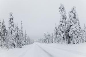 Чехию завалило снегом