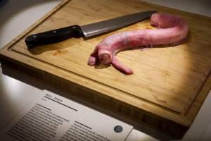 В шведском музее покажут сгнившее мясо акулы и бычий пенис